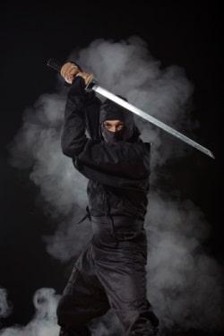 NinjaSized