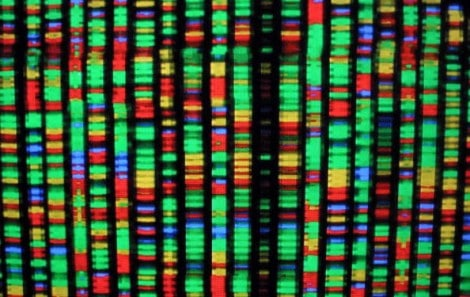 Human-genome-2001-getty-e1461007101924