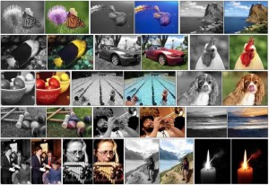This neural network 'hallucinates' the right colors into black and whitepictures