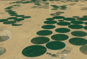 From Farming To Big Data: The Amazing Story of John Deere