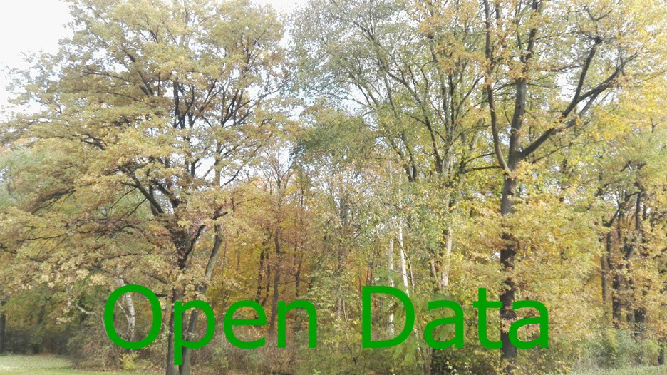 Forests and open data