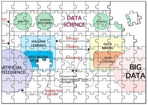 The Data Science Puzzle