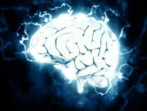 Google Brain team prepares for machine-learning-driven future
