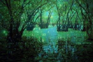 If your data lake turned into a data swamp