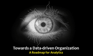 Towards a Data-driven Organization: A Roadmap for Analytics