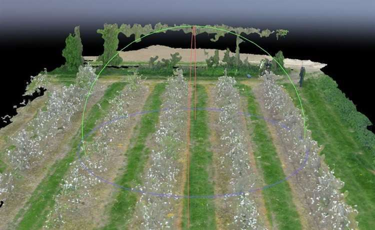 Predicting fruit harvest with drones and artificial intelligence
